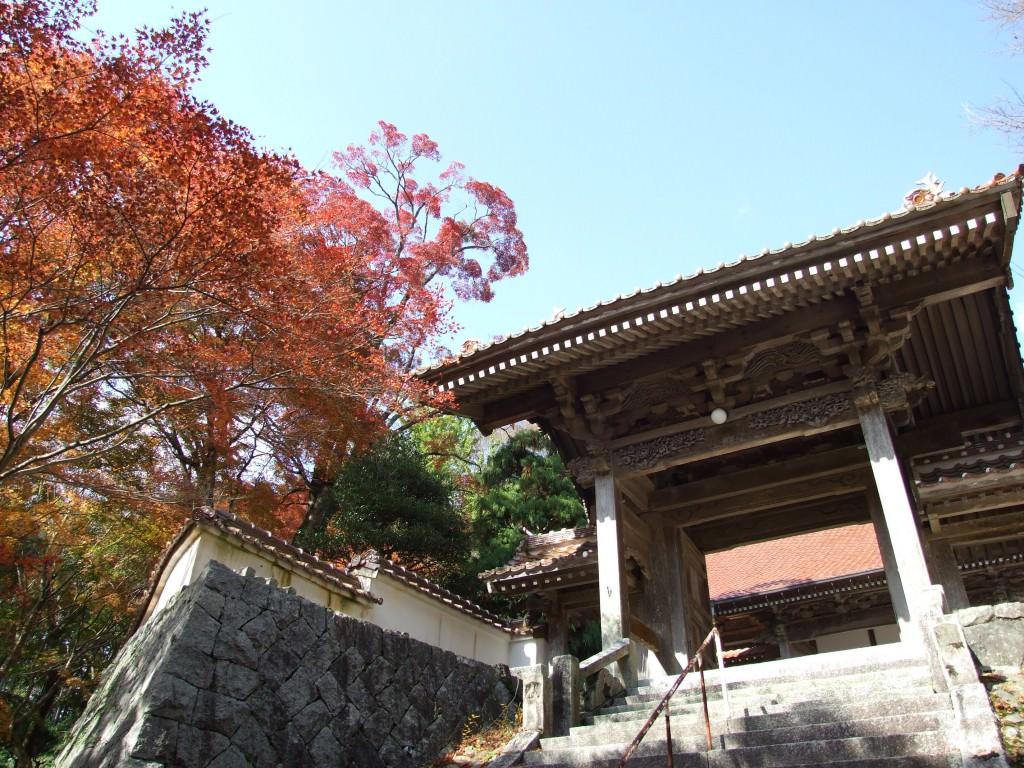 西念寺 (6)