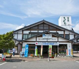 a-kikugawa01