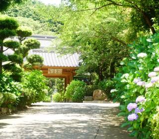 20160603_向徳禅寺