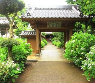 20160608_向徳禅寺