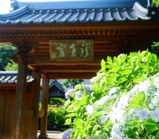 20160614_向徳禅寺