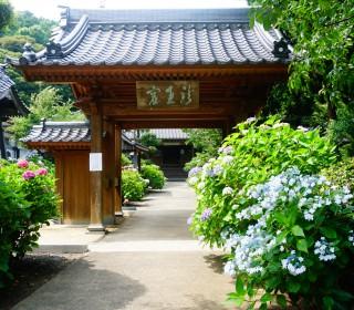 20160618_向徳禅寺