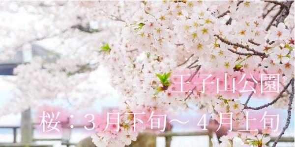 花めぐり_王子山公園