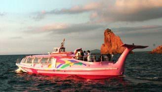 青海島サンセット漁火クルーズ