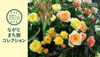 「ながとまち旅コレクション・プレ大会」05:ながと生まれのお花でアレンジメント